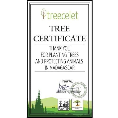 Zertifikat für Madagaskar