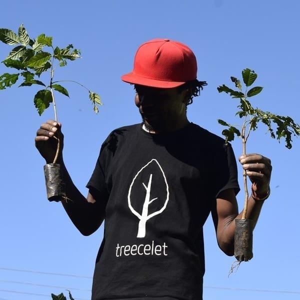 Einfach Bäume pflanzen